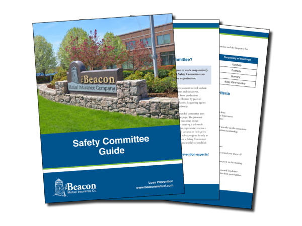 SafetyCommitteeBooklet-Preview-1